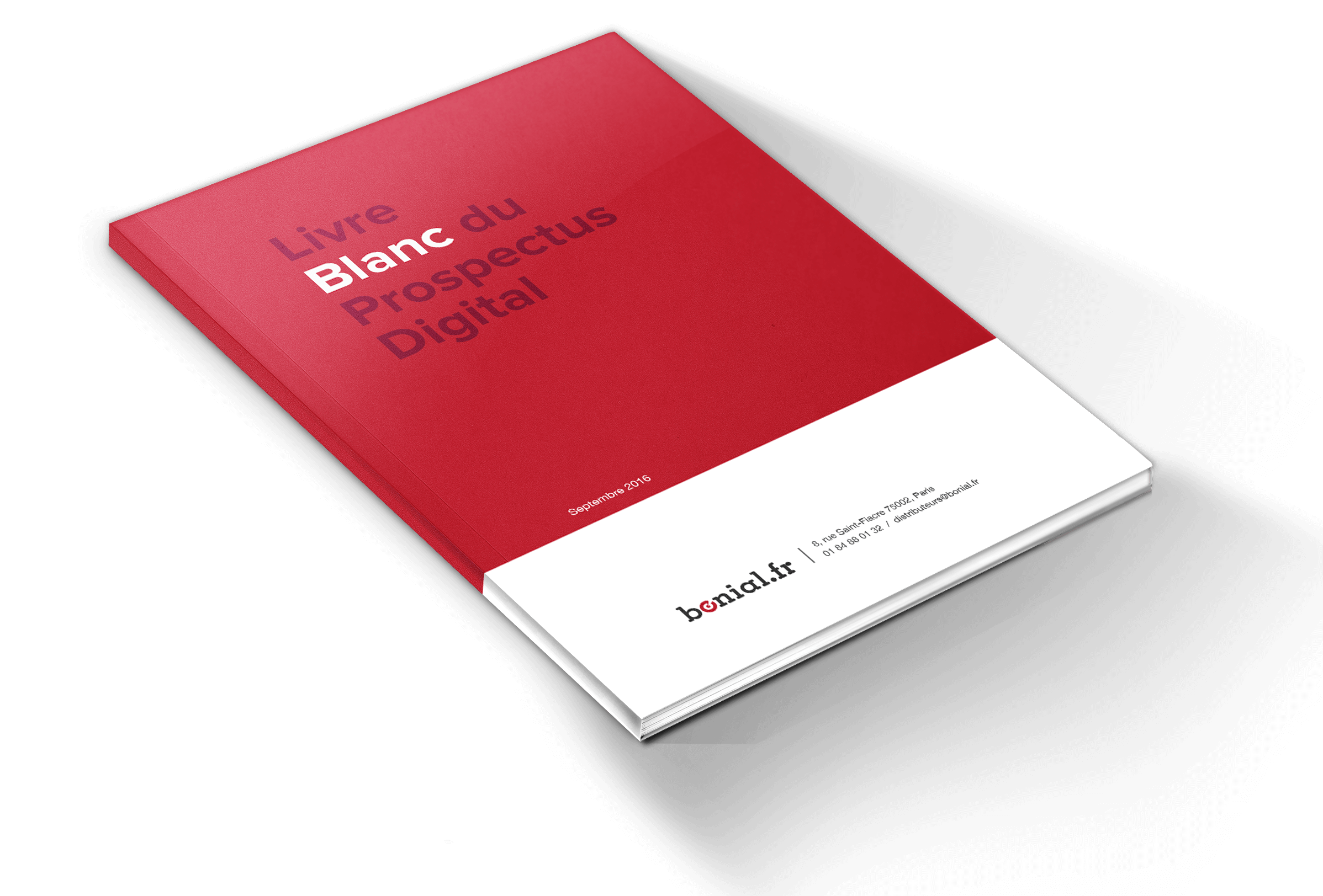 livre-blanc-prospectus-digital